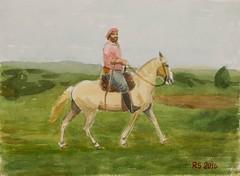 DSCF7277_low (RafaelSan) Tags: horse watercolor criollo caballo acuarela gaucho