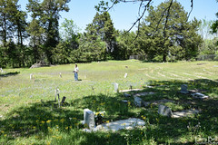 DSC_0285.jpg (SouthernPhotos@outlook.com) Tags: cemetery us unitedstates alabama sumtercounty larrybell browncemetery emelle larebel larebell