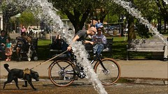 Dog Walking - Slow Motion (swong95765) Tags: park people dog man fountain bicycle kids video riding slowmotion