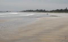Seasons: Summer (halifaxlight) Tags: trees sea mist canada beach sand novascotia walkers figures beachmeadows