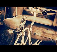 Vintage Bicycle (EddyB) Tags: france bicycle vintage europa europe fuji bicicleta francia fujinon tinted lectoure virado eddyb gascoigne xt1 gascua xf1855f284mm