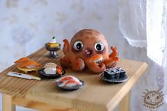 08 (rioky_angel) Tags: cute monster cat creativity toys furry handmade ooak fluffy fantasy clay octopus artdoll creature grumpy arttoy grumpycat toymaker polimerclay riokycreatures