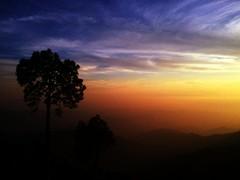 Dusk. (sehrish_pesnani) Tags: trees pakistan sunset sundown vibrant hills colourful islamabad travelbeautifulpakistan