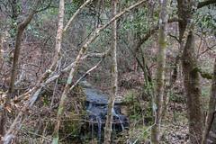 DSC_2676 (Bob Carlson) Tags: park state falling waters