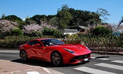 Japanese Garden (D.N. Photography) Tags: auto road red cars car canon garden eos japanese automobile automotive ferrari monaco exotic transportation 7d carlo monte supercar automobiles exotics supercars f12 berlinetta