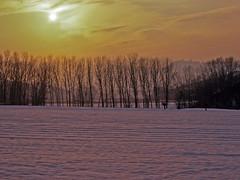 Christmas (long time ago) (giorgiorodano46) Tags: winter italy snow piemonte neve 1977 inverno natale monferrato campi fileds mombaruzzo dicembre1977 maranzana campiinnevati snowfiels