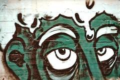 graffiti29 (fabio.mattutino) Tags: graffiti torino parco dora street art voigtlander bessa r2m kodak gold 200 ritratto portrait people persone italy italia piemonte piedmont turin color heliar 50mm spray paint wall