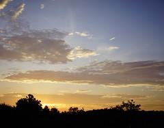 Sunrise Behind The Trees (MartMart1413) Tags: rose skyscape sky landscape gold golden serene honey blue clouds sunset dusk trees prdosol   paisagem ouro himmel rosa landschaft  miele  rvores     doro     bleu honig  miel  blu stieg nuvole     oro nuvens paesaggio blau    rboles cu dmmerung   crepuscolo  arbres