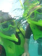 P1020628 (ericvdb) Tags: statepark snorkeling lyra floridakeys keylargo johnpennekamp
