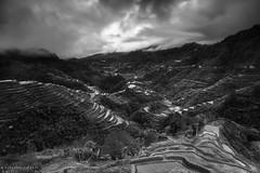IMG_8628 (mykel7873) Tags: white black monochrome landscape photography mono long exposure rice philippines terraces banaue ifugao