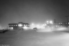 Le péril blanc (alex.bernard) Tags: winter snow canada cold canon vent wind outdoor hiver snowstorm québec neige snowfall tamron froid montsainthilaire tempêtedeneige tamron2470 canon5diii