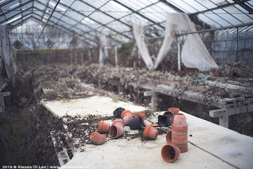 Urbex abandoned greenhouse by Alessio Di Leo, on Flickr