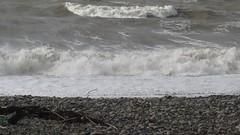 The power of the elements (billnbenj) Tags: video cumbria barrow irishsea galeforcewind walneyisland 10metretide
