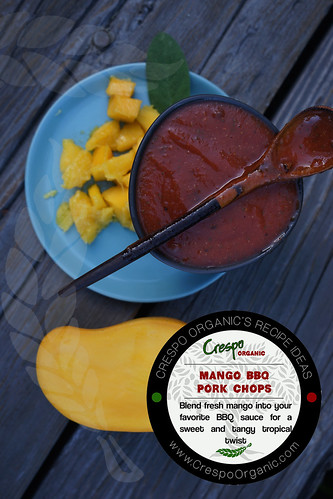 "Mango BBQ Pork Chops- Ideas • <a style=""font-size:0.8em;"" href=""http://www.flickr.com/photos/139081453@N03/25142846559/"" target=""_blank"">View on Flickr</a>"