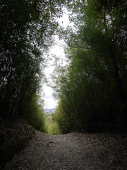 (Steve only) Tags: landscape lumix hiking g panasonic asph f4 7144 vario m43  14714 714mm dmcg1