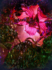 Hibiscus Moon (flynryon) Tags: art texture mike mobile digital portraits landscapes flickr artist canvas glaze adobe kansas shape figures impressionist fingerpaint ryon iphone artstudio scumble mashablecom fingerpaintedit flynryon iamda ipainter beesparkt paintbookca beesflite beesparkt:week=64