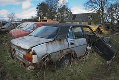 DSC_9791 (srblythe) Tags: uk classic cars ford abandoned graveyard car austin volkswagen scotland volvo rust fiat decay north rusty british scrapyard hyundai leyland vauxhall volvograveyard