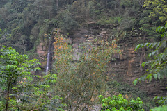 Waterfall (Bob Hawley) Tags: trees mountains forest outdoors asia taiwan bamboo waterfalls valleys nikon1755f28 yunlincounty nikond7100 qingshuiriver