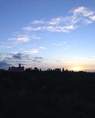 I never get tired of this run. It always leads me to this beautiful sun.  #Sunrise #Run #Runner #Running #EagleRock #LA #LosAngeles #ColoradoStreetBridge #SuicideBridge #Pasadena #NoFilter April 16, 2016 at 08:09AM (karolalmeda) Tags: sun never get me beautiful sunrise this la losangeles running run it tired april always 16 pasadena runner leads nofilter eaglerock  suicidebridge 2016 coloradostreetbridge i instagram ifttt 0809am
