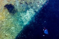 Opciones (Pirata Larios) Tags: canon agua peces sombra basura abstracto febrero foso g12 2015 carloslarios