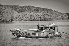 Trader (Chorizo from Berlin) Tags: cruise blackandwhite monochrome river boat speedboat vietnam vn longan petroexpress asiatripoctobernovember2015