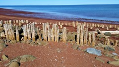 20160422_161953 copy (cora.anne) Tags: old fundy posts