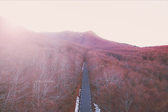 Endless road. (arturii!) Tags: road trip travel autumn winter light sunset red sky mountain tree nature beauty forest wow landscape outdoors flying amazing cool nice interesting holidays europe paradise tour view carretera superb magic awesome great peak natura roadtrip catalonia aerial route stunning summit viatge catalunya moment asphalt leafs vacations impressive beech gettyimages endless drones drone montseny dji sunlighy arturii arturdebattk canonoes6d