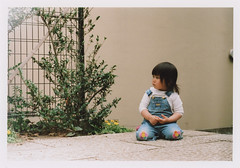 insta095 (sudoTakeshi) Tags: film japan kids tokyo child kodak sit filmcamera portra exakta kodakfilm carlzeiss  nezu tessar  kodakportra400 ihagee kodakportra  carlzeisstessar exaktavx1000 exaktavx tessar50mm