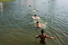 Cooling off time. Shan State, Myanmar. (Jeff Williams 03) Tags: swimming myanmar shanstate