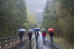 Paseando bajo la lluvia (vitometodio) Tags: rain lluvia colores paraguas nikond90 nikon35mm18 vitometodio
