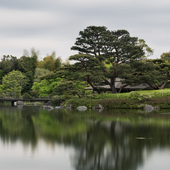 - Spectral Pond (Eled) Tags: japan tokyo tachikawa    showakinenkouen