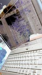 Laptop capture (navarrodave80) Tags: mirror laptop screen negative acer