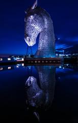 Kelpie (EricHarden) Tags: blue reflection water night nikon d300 kelpie scotlanf flakirk kelpies tokina1116mm thekelpies