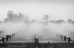 Ghosts Of Industries Past - Into The Mist (Nicky Highlander Photography) Tags: lighting morning trees blackandwhite mist industry water monochrome lines metal stone soft industrial factory moody outdoor pipes documentary dramatic lifestyle atmosphere steam sugar fieldtrip barbados layer production fade caribbean awards waterdrops ghostly leading mention density neutral honorable barbadian saintjames westindies 2015 honorablemention blowers portvale barbadosphotographicsociety ghostsofindustriespast ipoty