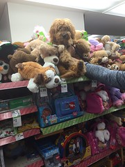 Shasta's Winnie looks just like the other stuffed animals!
