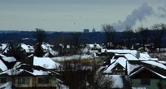 from a distance (humbletree) Tags: winter snow wisconsin pentax danecounty k10d popefarm