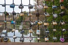 Local version of love bridge (atgc_01) Tags: lumix arboretum ucdavis lx3