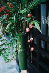 Japanese Decorative Plant (freefalla) Tags: plant green japan japanese historic dangling kanazawa