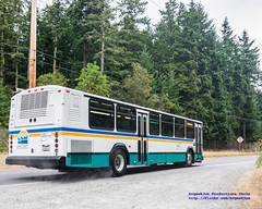 Island Transit Route 1 Dropping Me Off Just West of Island Transit HQ (AvgeekJoe) Tags: bus nikon publictransportation masstransit dslr gillig route1 masstransportation islandtransit d5300 nikond5300