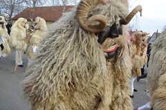 2016_Busjrs_0283 (emzepe) Tags: carnival portrait costume hungary mask utca horn ungarn kirnduls 2016 hongrie mohcs csaldi tl portr janur bus busjrs farsang larc karnevl jelmez tomori maszk szarv mohatsch beltztt moha felvonul