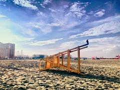The Watcher (ainulislam) Tags: blue shadow sea sky cloud bird beach bay sand outdoor shore cox crow
