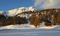 """""""Insolito"""" paesaggio invernale 2016 Bellamonte (Stefano_Gardener) Tags: neve inverno trentino baita valdifiemme bellamonte"""