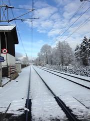 Hahnenkammbahn (Jauss) Tags: ski alps alpes sterreich neige alpen tyrol autriche kitzbhel