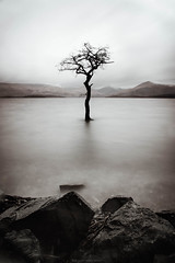 Loch Lomond // 07 02 16 (Manadh) Tags: winter blackandwhite water landscape scotland pentax sigma loch lochlomond waterscape k3 1835mm milarrochybay 10nd manadh