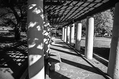 January 2016 (Carodean Road Designs) Tags: park street trees blackandwhite house coffee leaves rain fence succulent arbor iceplant centuryplant irongate industrialbuilding treelinedstreet snowcappedmountain metalfence halftimberhouse orangesucculent