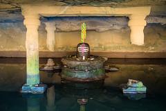 (marcus kamps) Tags: india temple cave pillars hindu lingam shivling