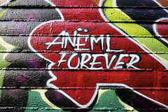 ANEML FOREVER (STILSAYN) Tags: california graffiti oakland bay east area forever 2016 aneml
