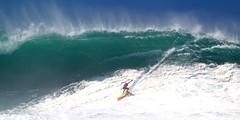 Ramon Navarro (Kanaka Menehune) Tags: hawaii oahu surfer wave surfing waimeabay theeddie eddiewouldgo ramonnavarro eddieaikau2016