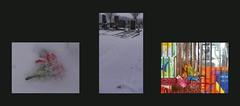Tapestry Diary 23. Jan. 2016 Broken Blossom at the Cemetery Tagebuch Teppich Tapisserie Tagebuch gefallene Blüte im Schnee Simmeringer Friedhof Unter der Kirche - TimeLine red rot (hedbavny) Tags: vienna wien blue schnee red friedhof white snow flower tree rot kitchen cemetery grave graveyard yellow angel gold austria mirror design costume österreich dress blossom assemblage spiegel diary tomb tombstone band tapis decke gelb fallen gravestone engel küche weaver blau grab recycling blume grabstein blüte tagebuch baum weber loom tapestry teppich handwerk webstuhl analogie werkstatt kleid tapisserie szene weis inszenierung arbeitsraum gefallen aufzeichnung roterfaden upcycling weavingloom bildteppich webatelier teppichweber hedbavny ingridhedbavny goldenerfaden zeitlicheabfolge tapistura