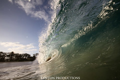IMG_0294 copy (Aaron Lynton) Tags: beach canon big barrel wave 7d spl makena shorebreak lyntonproductions